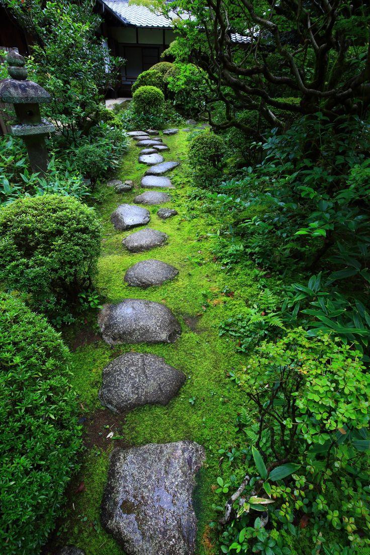 飛び石 苔 灯籠 参道 高桐院 京都 情緒