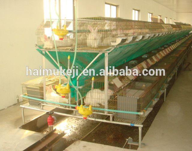 Source Wholesale Automatic Rabbit Cages Commercial Rabbit Cages On M Alibaba Com Rabbit Cages Rabbit Farm Rabbit Cage