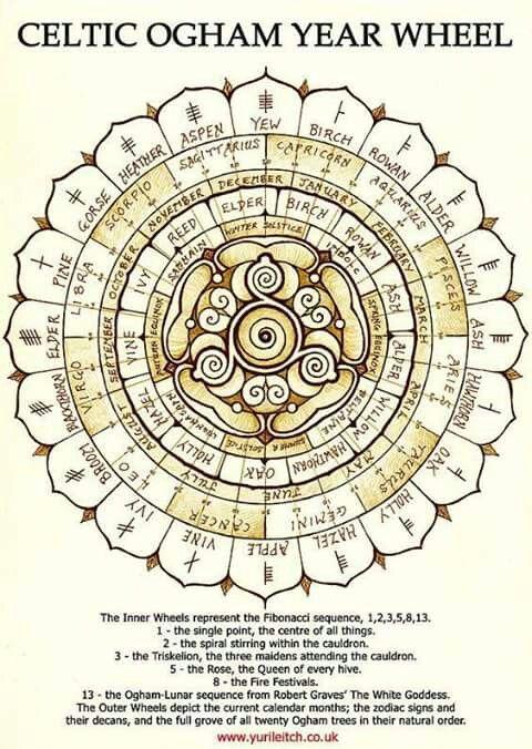 wicca calendar # CELTIC IRISH OGHAM YEAR of WHEEL # alephbet tree month zodiac alephbet