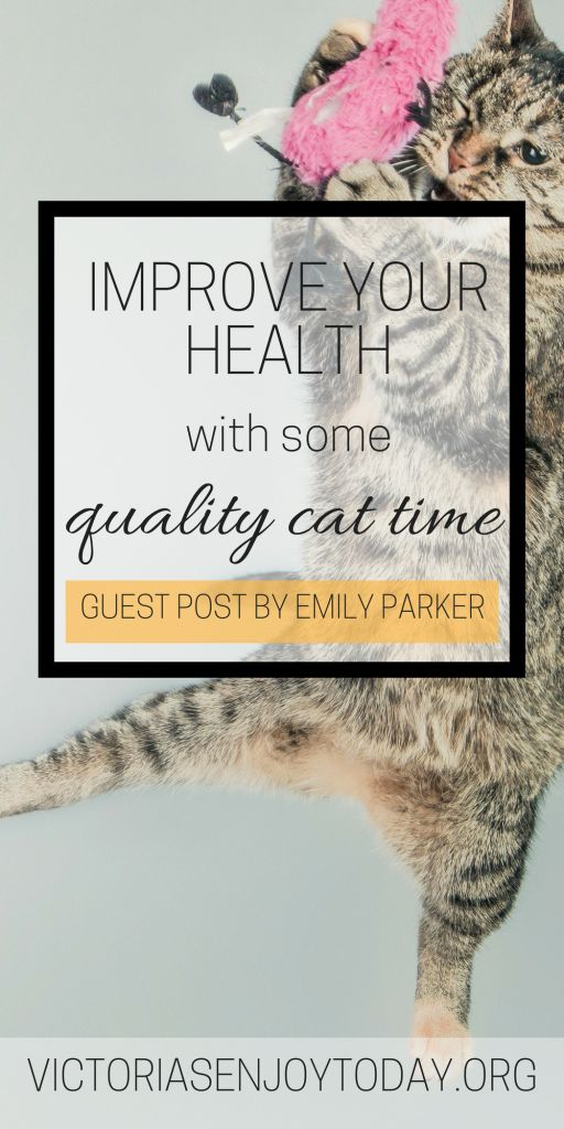Improve Your Body and Mind By Having Some Quality Cat Time! : A Guest Post by Emily Parker