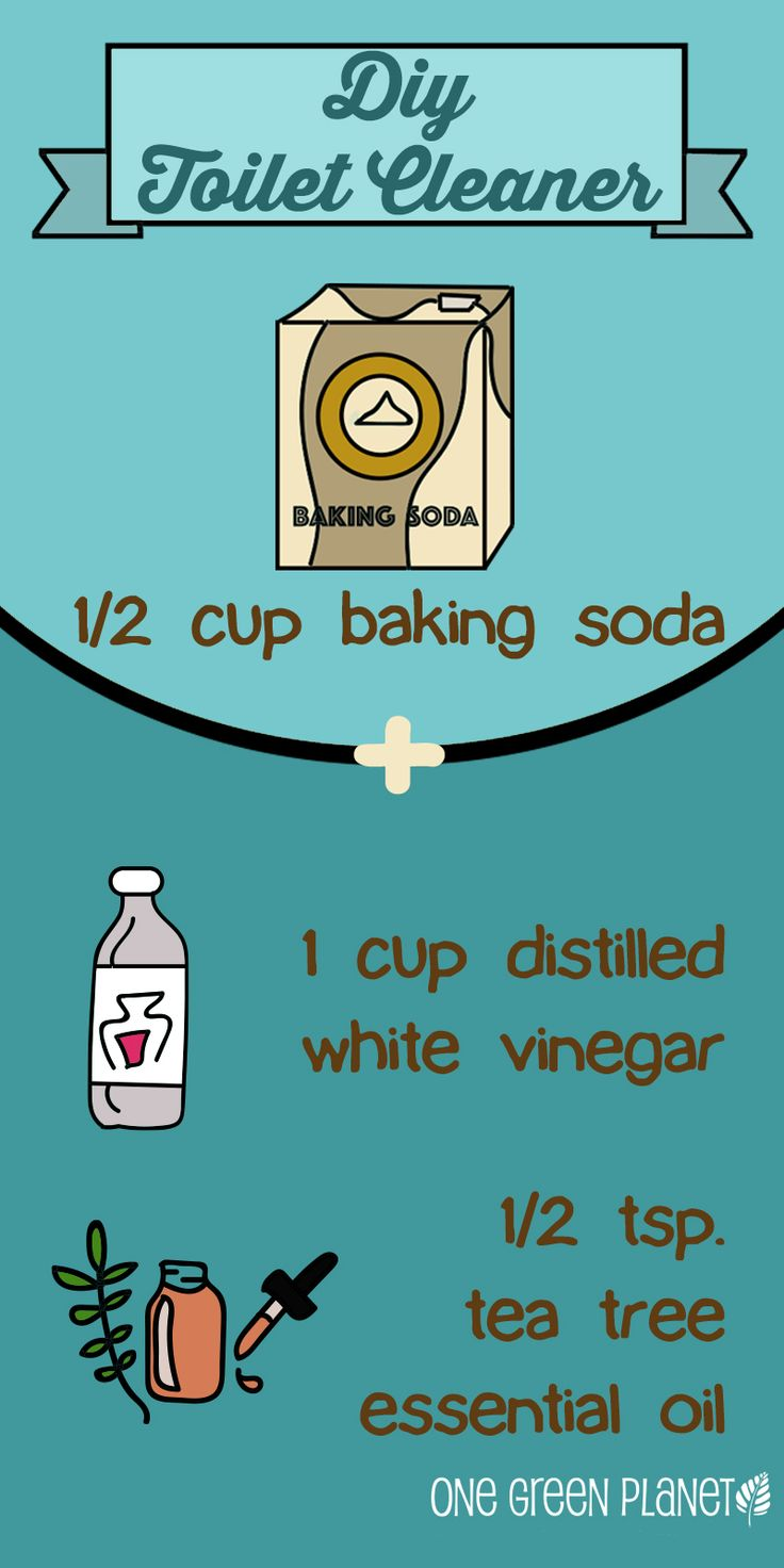DIY Toilet Cleaner #livegreen #DIY