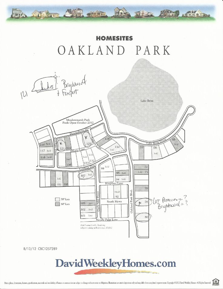 David Weekly Homes Site Plan In Oakland Park, Winter Garden FL