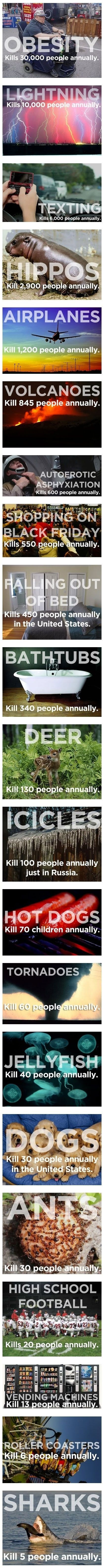 20 things that kill more people than sharks