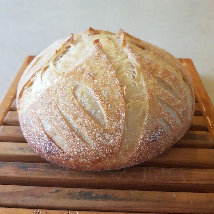Kefir Sour Dough Loaf #Nourishmeorganics #Guthealth
