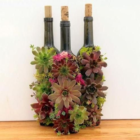 DIY Wine Bottle Succulent Planter Tutorial - Life Chilli