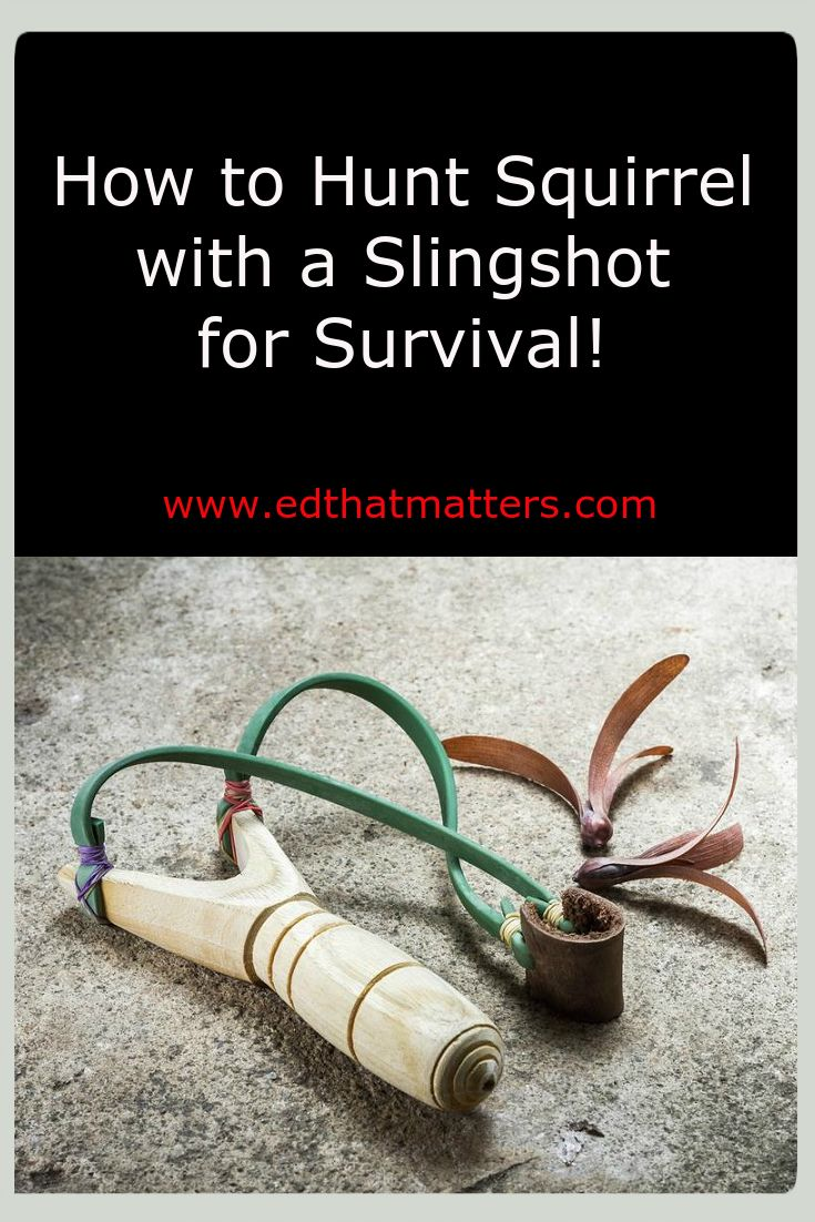 17 best images about hunting fishing on pinterest for Survival fishing games