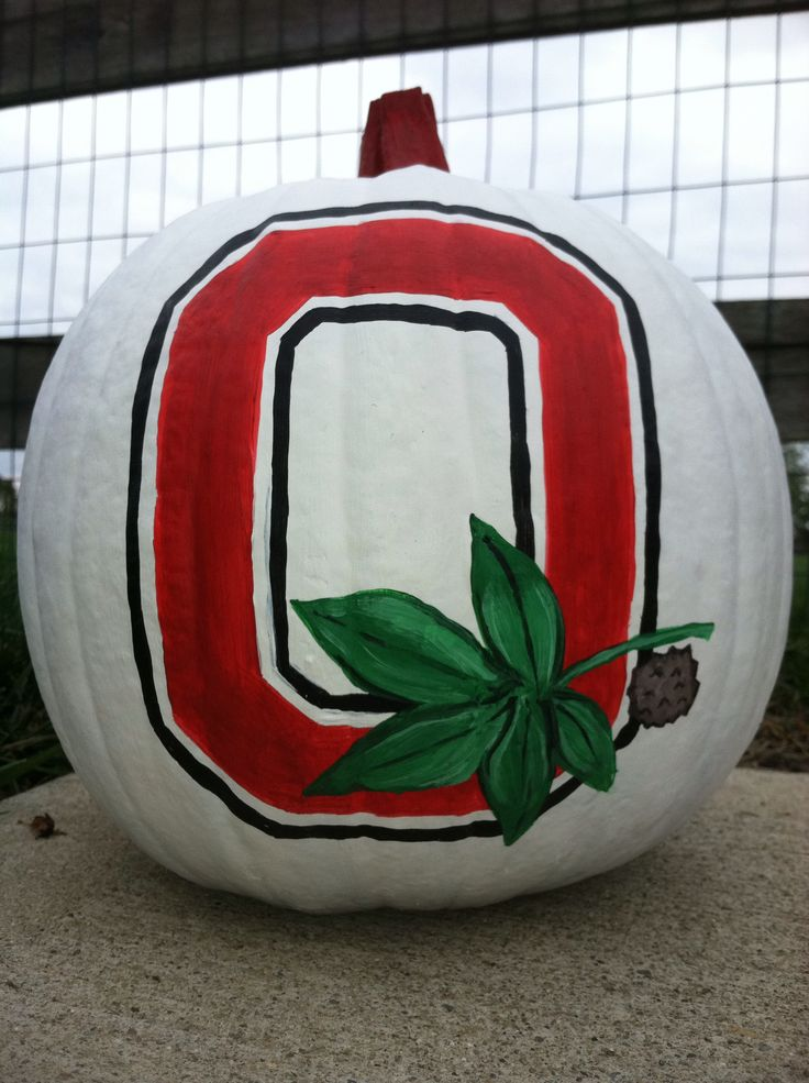 Ohio state painted pumpkin my creations pinterest