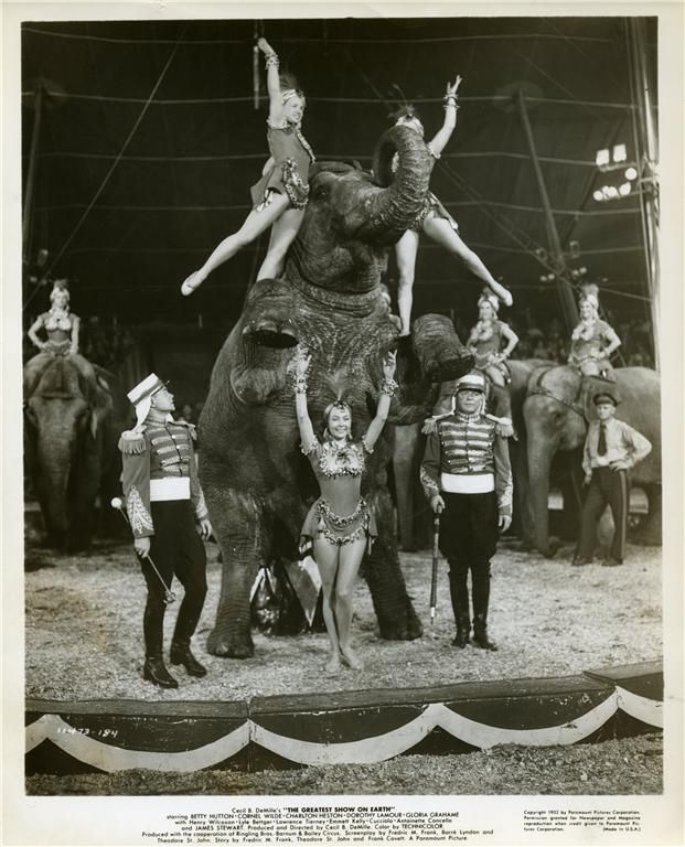 20s circus outfits - Google SearchBeats Circus, Circus Inspiration, Vintage Circus, 621 768, Circus Costumes, 20S Circus, Circus Pictures, Circus Vintage, Circus Outfit