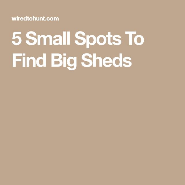5 Small Spots To Find Big Sheds