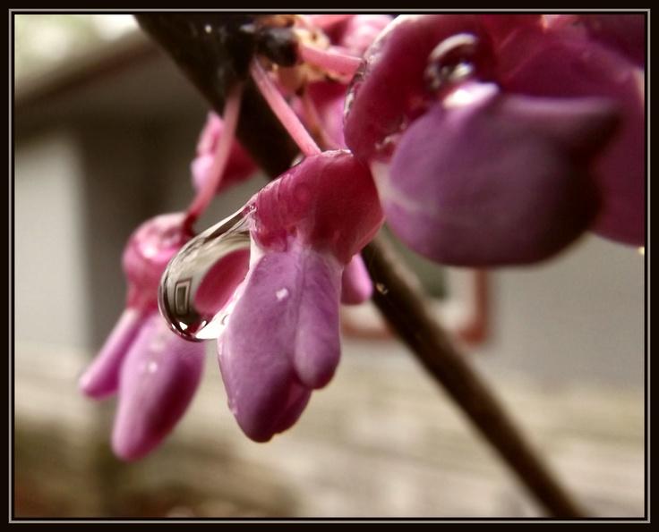 Reflection of window in water drop