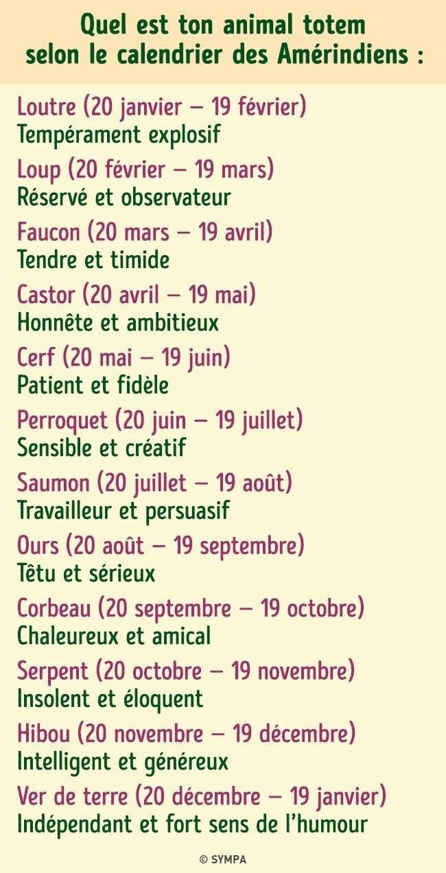 Loup Astrologie Signe Astrologique Zodiaque