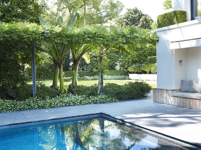 Pool with Wisteria sp. and Trachelospermum jasminoides | Flickr - Photo Sharing!