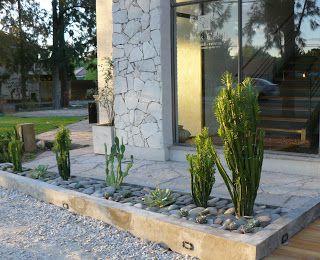 Jardines de cactus y suculentas: Jardín de cactus y suculentas