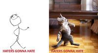 "18 Cats As Rage Faces  These are all the cats that those cartoon rage faces you see on the Internet are modeled after.    ""Haters gonna hate"" cat"