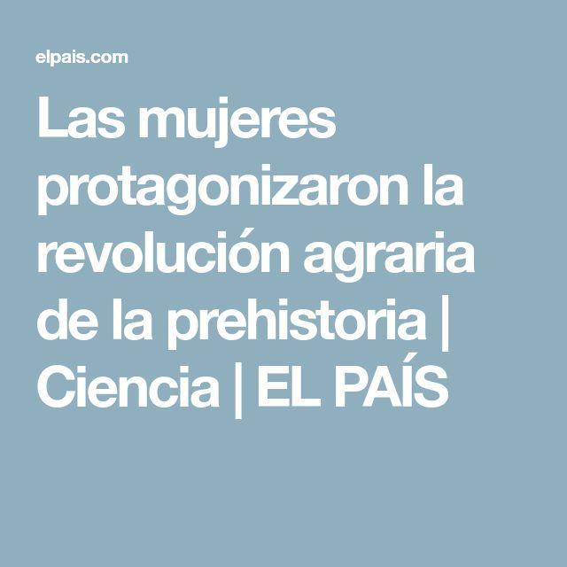 Las mujeres protagonizaron la revolución agraria de la prehistoria | Ciencia | EL PAÍS