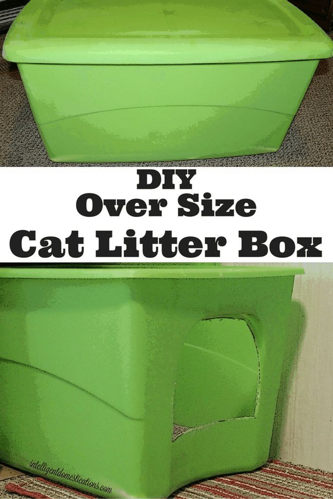 DIY Oversized Cat Litter Box for your claustrophobic cat. One of the reasons cat's avoid litter boxes is the confined feeling.
