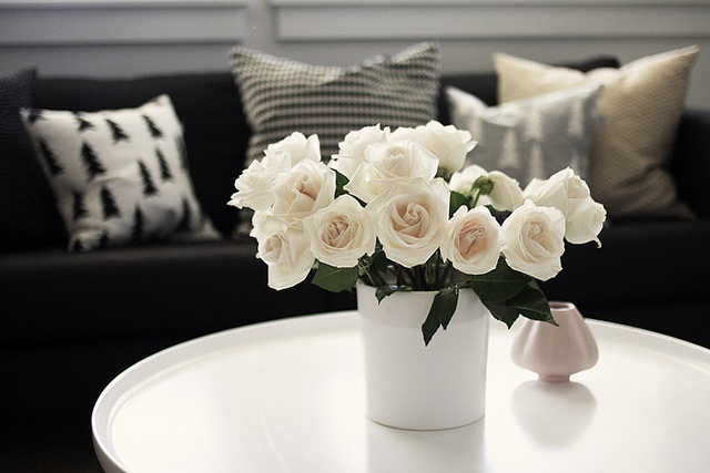 by AMM blog, via Flickr: White Flowers, White Rose, Amm Blog, Black White, Fresh Flowers, Natural, Nice Flowers, Inspiration Blog, Nature S Beauty