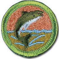 17 best images about Merit Badges on Pinterest