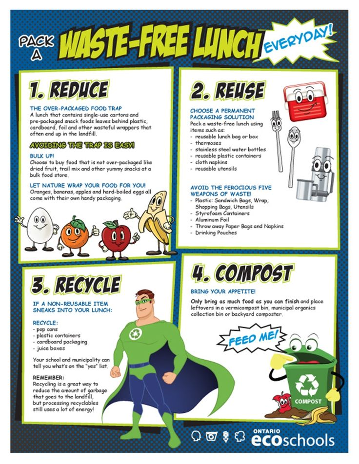 waste free lunch poster