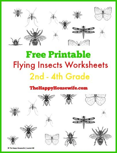 Printables Free Abeka Worksheets 1000 images about free homeschool printables on pinterest summer is a perfect time to study insects supplement an insect unit with these