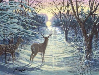 James Lumbers Winter Solstice