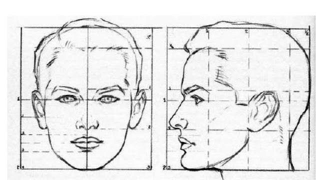 Cara De Frente Y De Perfil Dibujo Buscar Con Google Andrew Loomis Face Drawing Silverpoint