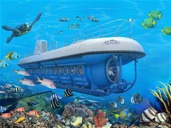 Atlantis Submarines Expedition Tour  in downtown Oranjestad, Aruba