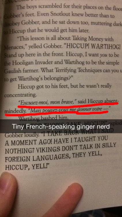 ringdingaling:  Hiccup canonically speaks fluent French pass it on
