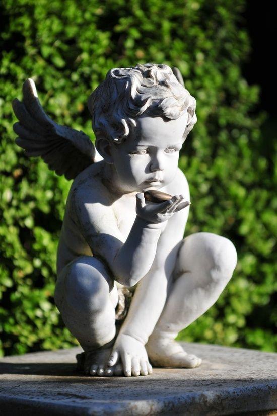 angelical, perfeito...
