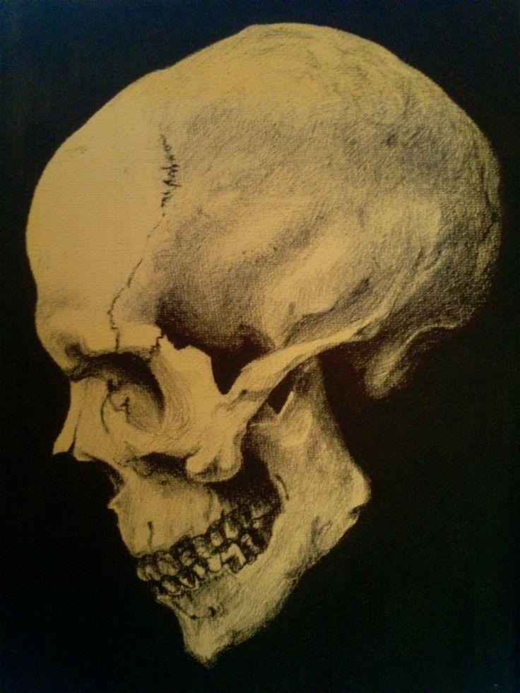 Ilustraci n craneo de perfil skull Pinterest