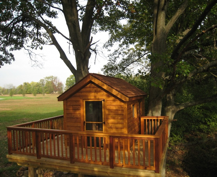 14 best for our woods images on pinterest treehouses for Treeless treehouse