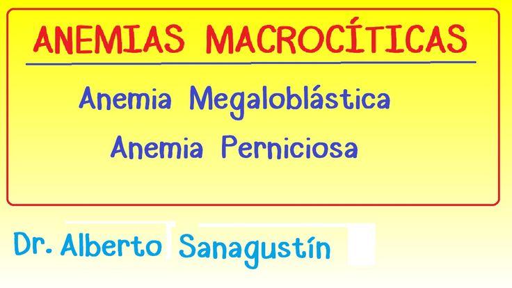 Anemias (2): Anemia Macrocítica   Megaloblástica