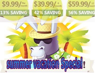Hide My Ass VPN Summer Vacation Sale 2013 Details  This lucrative offer is available from 1st August to 31st August, 2013. (Terms & Conditions Apply). So, rush now to avail this incredible offer from Hide My Ass!  1 month:  $11.52 > $9.99 (13% saving)  6 month: $69.12 > $39.99 (42% saving)  12 month: $138.24 > $59.99 (56% saving)  http://www.bestvpnserver.com/vpn-coupon/