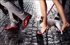 Hermes 2007Fashion, Dogs, Hermes, Ads Campaigns, Men Accessories, Digital Art, Parisians Sky, Camilla Akrans, Animal