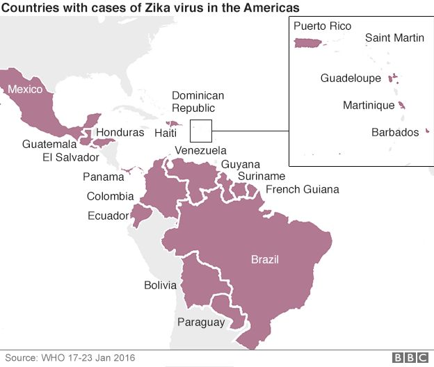 Map of Zika cases. Zika virus: Outbreak 'likely to spread across Americas' says WHO