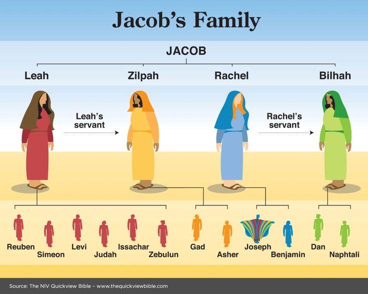 Los hijos de Jacob  (1 Cr. 2.1-2) 22 Aconteció que cuando moraba Israel en aquella tierra, fue Rubén y durmió con Bilha la concubina de su padre; lo cual llegó a saber Israel. Ahora bien, los hijos de Israel fueron doce:  los hijos de Lea: Rubén el primogénito de Jacob; Simeón, Leví, Judá, Isacar y Zabulón.  Los hijos de Raquel: José y Benjamín.  Los hijos de Bilha, sierva de Raquel: Dan y Neftalí.  Y los hijos de Zilpa, sierva de Lea: Gad y Aser. Estos fueron los hijos de Jacob, que le…