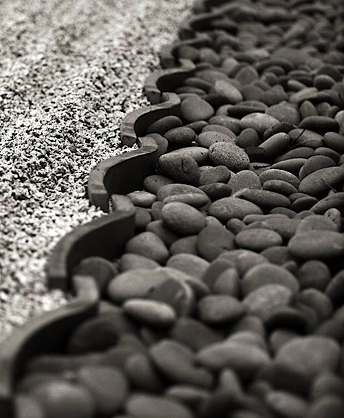 I like the monotone colors and textures in this photo. Would be nice in a zen garden, perhaps?