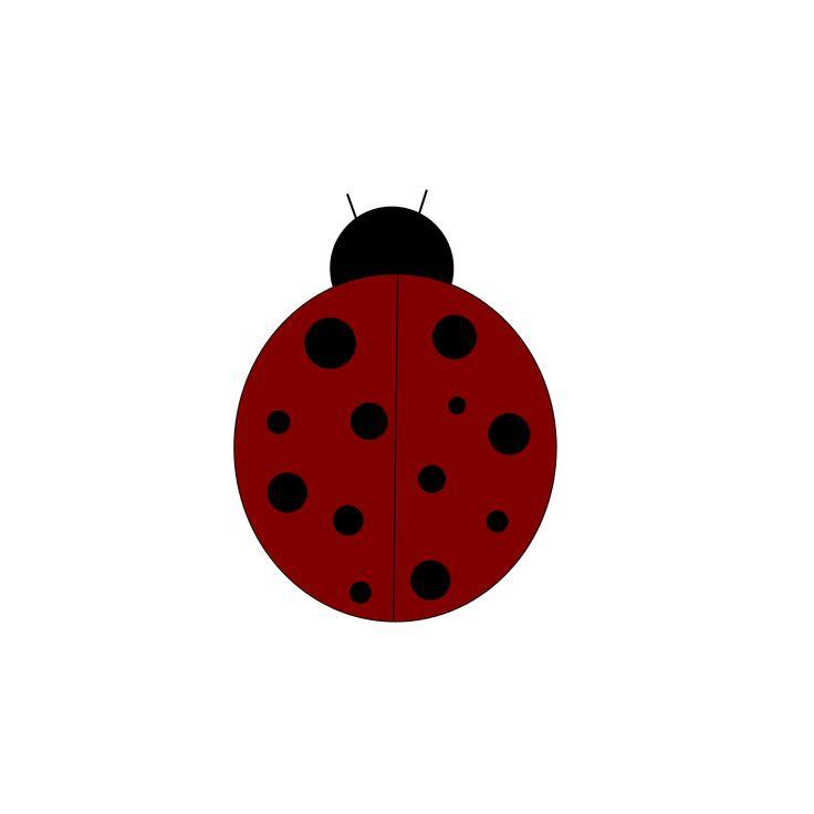 mejores 12 imgenes de cute ladybugs