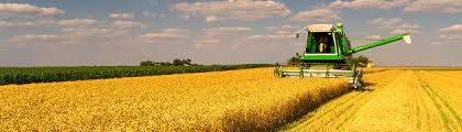 Get Farm Agent Insurance How Much Is Sufficient? Jessica Ross - State Farm Insurance Agent (704) 544-3205 #Insurance