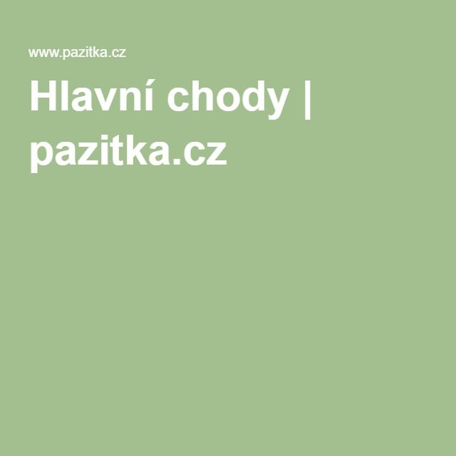 Hlavní chody | pazitka.cz
