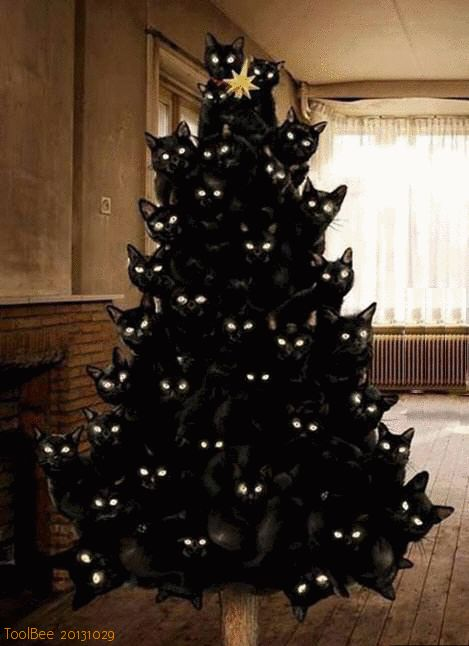Funny pictures about Crazy cat lady Christmas tree. Oh, and cool pics about  Crazy cat lady Christmas tree. Also, Crazy cat lady Christmas tree.
