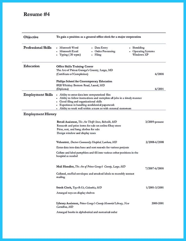 cool Perfect Data Entry Resume Samples to Get Hired,