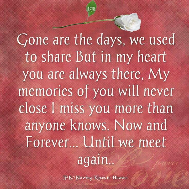 until we meet again my love quotes