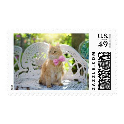 Pretty Kitty with Pink Bow Postcard Postage - pink gifts style ideas cyo unique