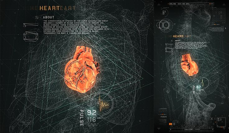 Interactive Touch Screen Application