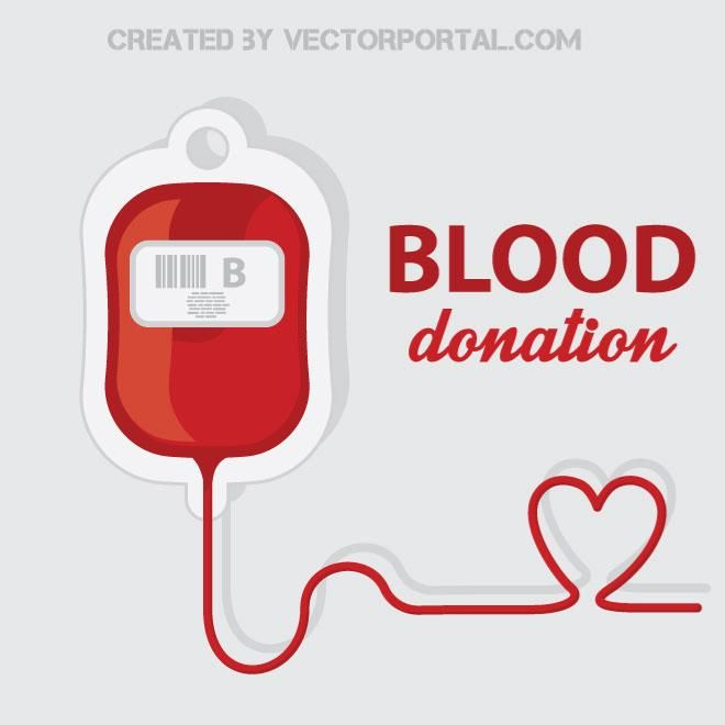Blood donation vector illustration