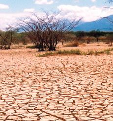 Desertificación en Argentina