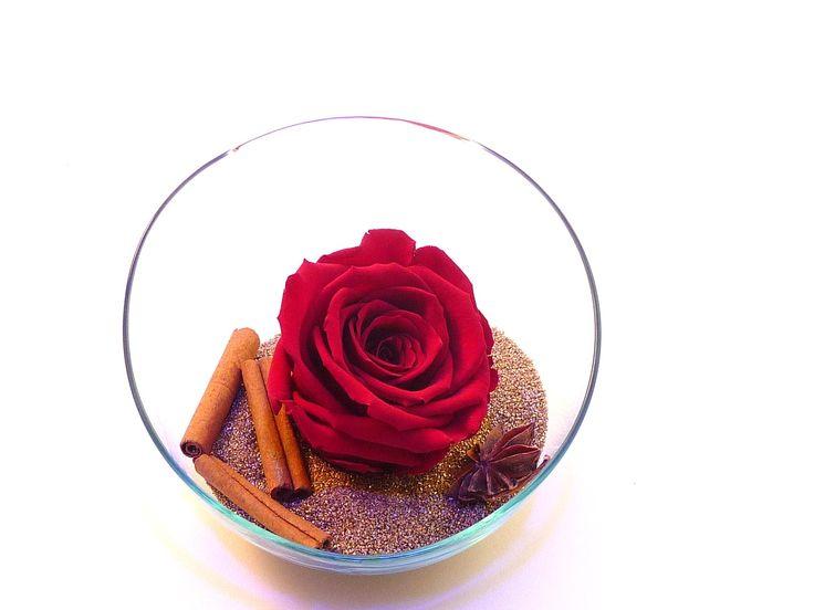 Décoration avec une rose éternelle rouge sur du sable or Mamikatou , cannelle , étoile anis.