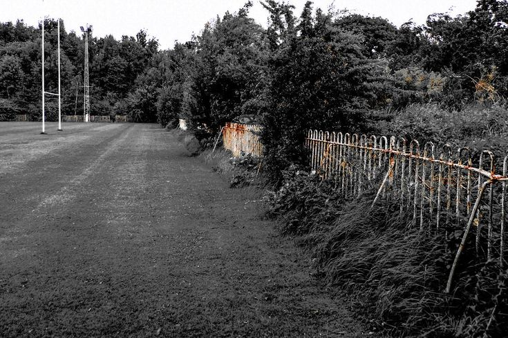 Taken at the former home of Huddersfield Giants Rugby League Team, Fartown the picture shows the overgrown northern terrace of the ground. Picture Copyright © 2017 Colin Green All Rights Reserved