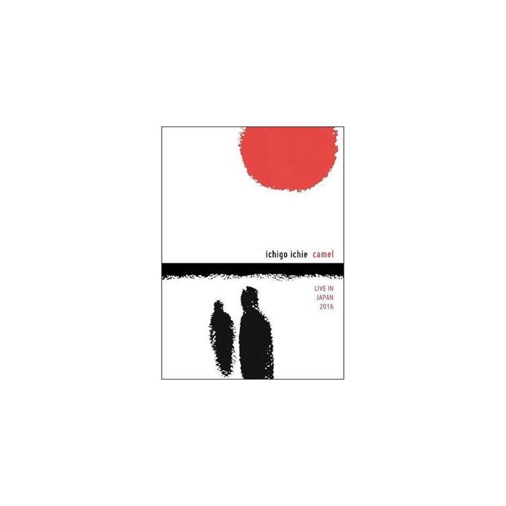 Ichigo Ichie: Camel Live in Japan (Dvd)